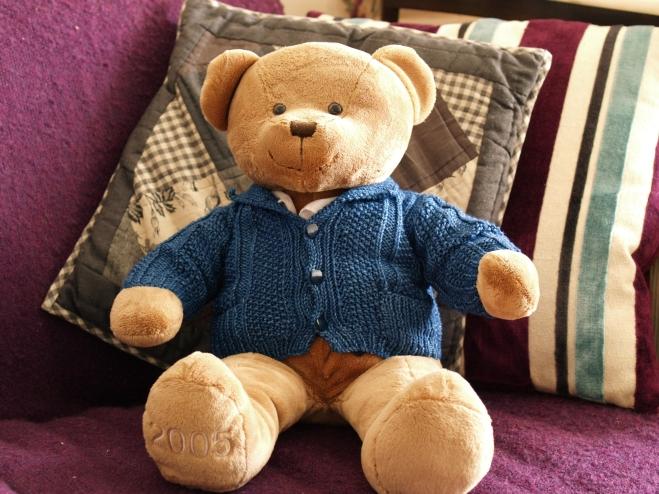 Baby jacket, not Teddy jacket